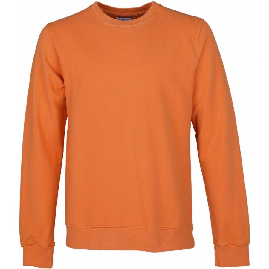 CS1005 – Burned Orange – Main