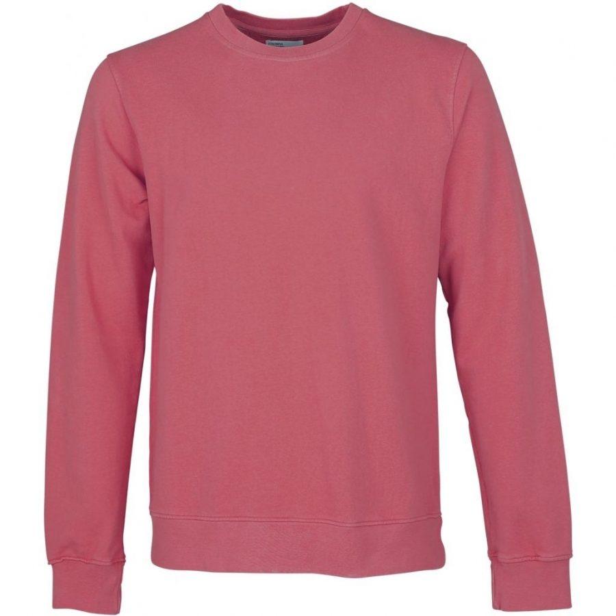 CS1005 – Raspberry Pink – Main