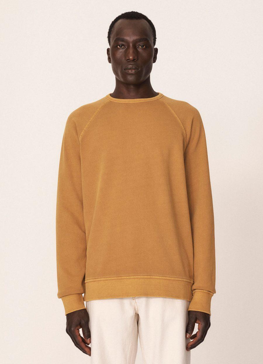 p7qab2_schrank_cotton_raglan_sweater_yellow_018