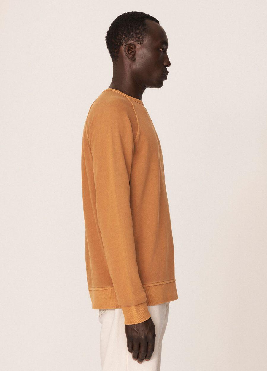 p7qab2_schrank_cotton_raglan_sweater_yellow_023